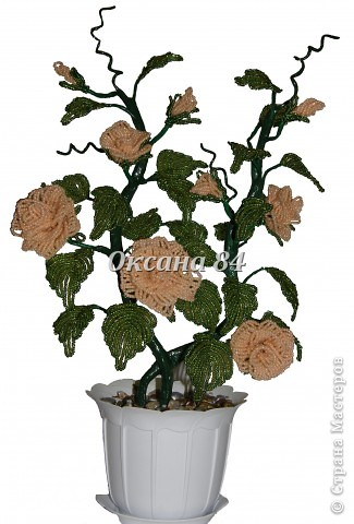 Это мой долгожданный куст роз,сделанный под чутким руководством Sophia.Наташенька,еще раз огромное спасибо за то,что ты у нас есть и делишься своими знаниями!!! фото 1