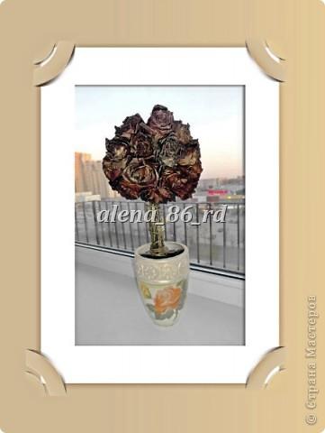 Топиарий из сушеных роз фото 1