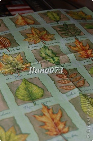 Я нашла еще применение новой салфеточке, устроила небольшой листопад :))) это для моей любимой крестной фото 3