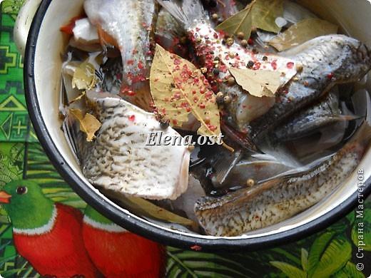 """Саламур или рыба маринованная. Еще можно назвать """"селедочка по-домашнему"""". Мой любимый рецепт приготовления рыбы. Рыбку можно брать любую. Особенно хороши: карп, карась, тарань, окунь, щука, судак.  фото 3"""