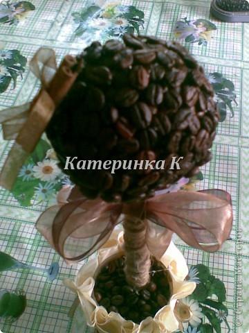 кофейное дерево. Ленты из органзы и палочка корицы фото 1