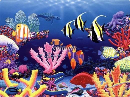 Очаровательный подводный мир... фото 4