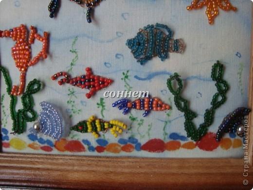 Очаровательный подводный мир... фото 2