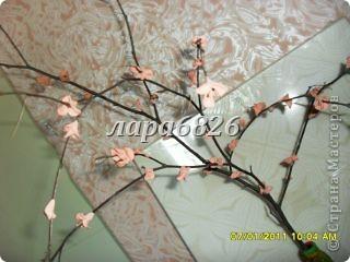 кто то делает денежное дерево,а я сделала вот такое. фото 24