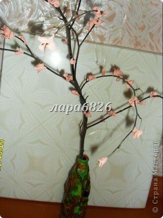 кто то делает денежное дерево,а я сделала вот такое. фото 25