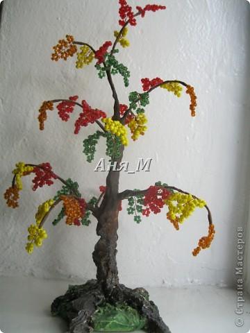 веточки яблони в цвету) фото 2