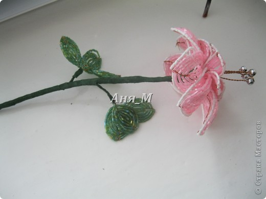 веточки яблони в цвету) фото 4