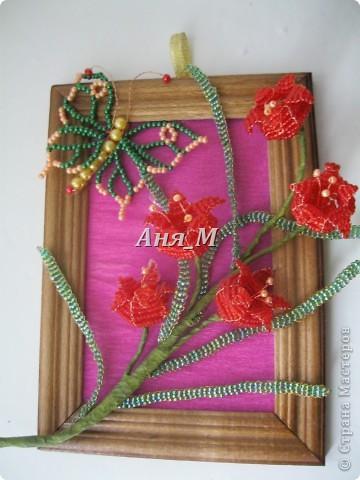 веточки яблони в цвету) фото 9