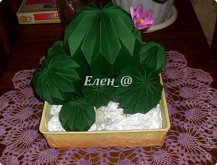 Вот такой кактус расцвел наконец у меня. Идея -не моя. В Хабаровском центре корейского бумажного творчества, которым руководит Софья Николаевна Баланюк я увидела другой кактус фото 11