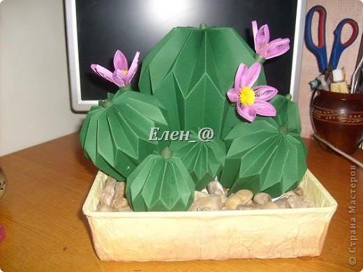 Вот такой кактус расцвел наконец у меня. Идея -не моя. В Хабаровском центре корейского бумажного творчества, которым руководит Софья Николаевна Баланюк я увидела другой кактус фото 12