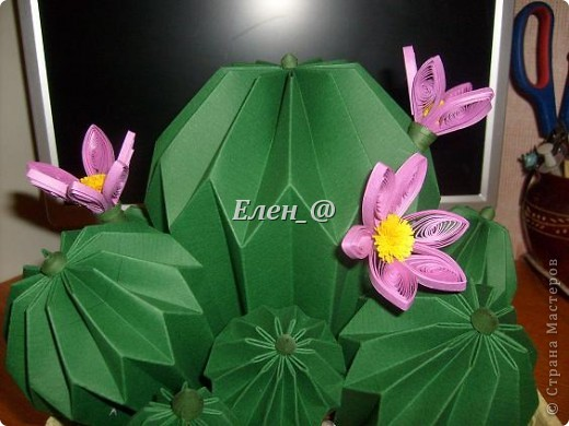 Вот такой кактус расцвел наконец у меня. Идея -не моя. В Хабаровском центре корейского бумажного творчества, которым руководит Софья Николаевна Баланюк я увидела другой кактус фото 13