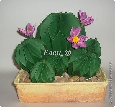 Вот такой кактус расцвел наконец у меня. Идея -не моя. В Хабаровском центре корейского бумажного творчества, которым руководит Софья Николаевна Баланюк я увидела другой кактус фото 1