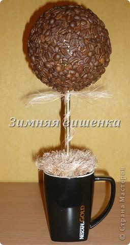 """Топиарий """"Кофе со сливками"""""""