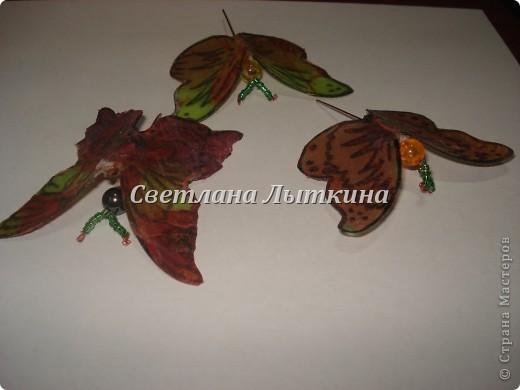 впервые увидела таких бабочек здесь http://by-hand.ru/item/view/3710 и решила себе сделать таких же прелестниц. Подробное описание как вырезать бабочек не буду повторять, а напишу лишь о своих изменениях. фото 2