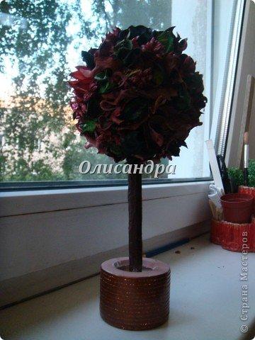 """Думаю, что Вы уже заметили...  """"Питаю слабость к деревьям""""...:)) , в том числе к топиариям...  По-моему, так называются эти миниатюрные деревца... Решила сделать на день рождения подруге ...в дополнение к подарку... фото 19"""