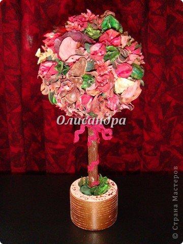 """Думаю, что Вы уже заметили...  """"Питаю слабость к деревьям""""...:)) , в том числе к топиариям...  По-моему, так называются эти миниатюрные деревца... Решила сделать на день рождения подруге ...в дополнение к подарку... фото 1"""