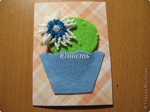 Спасибо огромное Машеньке (Бригантина) за МК по цветочкам http://stranamasterov.ru/node/207218, именно они сподвигли меня на эту цветущую коллекцию!!! Машенька выбирай, если какой-то из кактусят приглянулся. фото 6