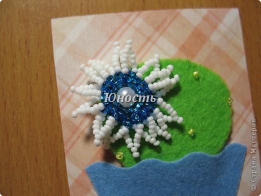 Спасибо огромное Машеньке (Бригантина) за МК по цветочкам http://stranamasterov.ru/node/207218, именно они сподвигли меня на эту цветущую коллекцию!!! Машенька выбирай, если какой-то из кактусят приглянулся. фото 7