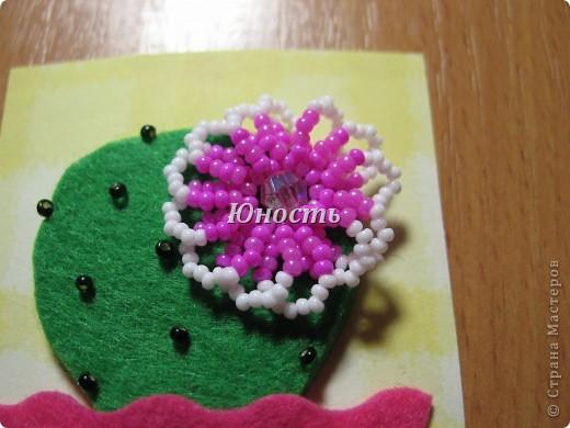 Спасибо огромное Машеньке (Бригантина) за МК по цветочкам http://stranamasterov.ru/node/207218, именно они сподвигли меня на эту цветущую коллекцию!!! Машенька выбирай, если какой-то из кактусят приглянулся. фото 13