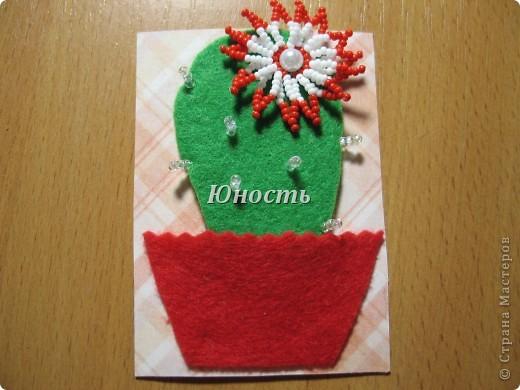 Спасибо огромное Машеньке (Бригантина) за МК по цветочкам http://stranamasterov.ru/node/207218, именно они сподвигли меня на эту цветущую коллекцию!!! Машенька выбирай, если какой-то из кактусят приглянулся. фото 14