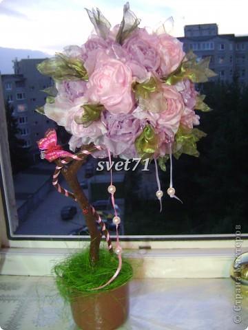Вот такое дерево получилось из тех роз,которые выставляла раньше. фото 1