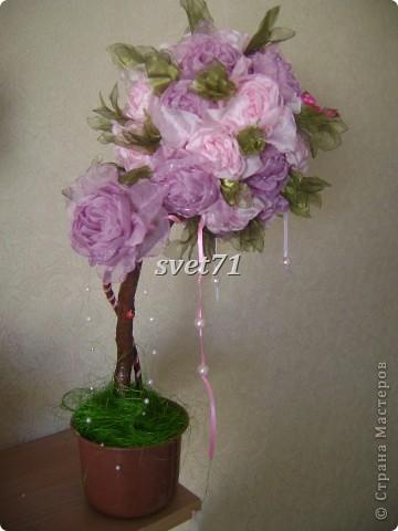Вот такое дерево получилось из тех роз,которые выставляла раньше. фото 4