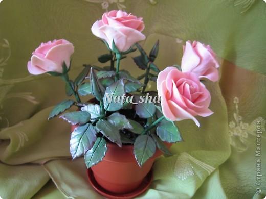Никогда не думала , что лепить розы - это так увлекательно! А дарить их - так упоительно... фото 1
