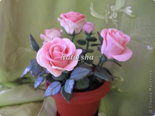 Никогда не думала , что лепить розы - это так увлекательно! А дарить их - так упоительно... фото 3