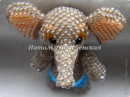 Слон Яша фото 2