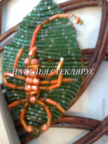 Скорпион. фото 1