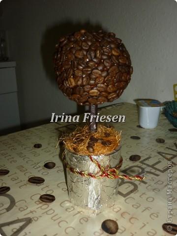 Одна из первых работ. Кофейное дерево. фото 1