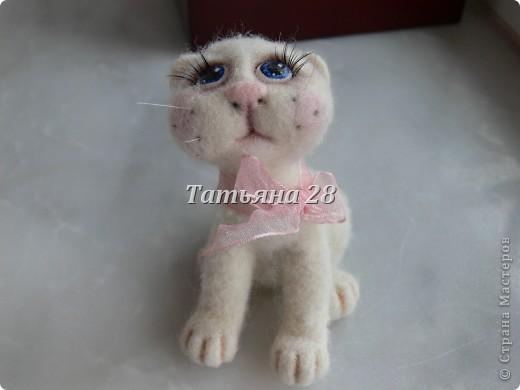 Этот котёнок приехал к нам из Белоруссии. Сделала такого замечательного котёнка Анастасия ( в стране мастеров под именем Чертёнок №13) Настюша СПАСИБО!!!!!!! фото 2