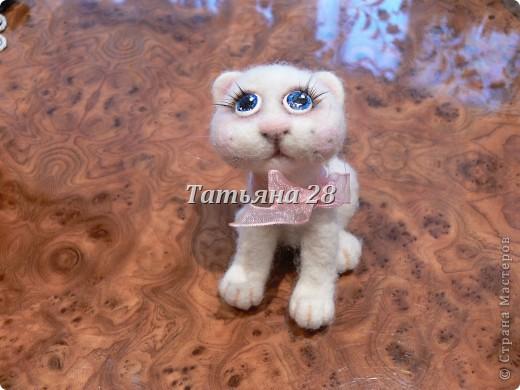 Этот котёнок приехал к нам из Белоруссии. Сделала такого замечательного котёнка Анастасия ( в стране мастеров под именем Чертёнок №13) Настюша СПАСИБО!!!!!!! фото 1