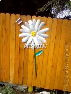 Наш забор