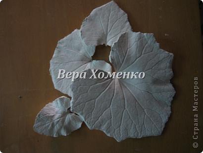Очень вдохновили меня листочки Alevtinushka. Благодаря этому возникла идея оформить дачное зеркало гипсовыми листьями. фото 3