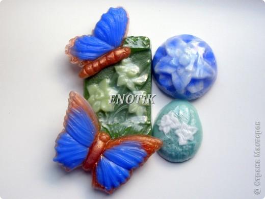 Бабочки и цветы фото 1