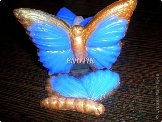 Бабочки и цветы фото 3