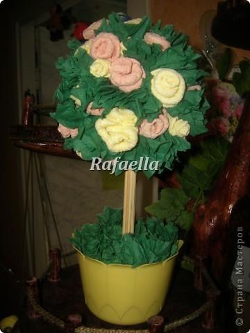 Мои первые деревья из роз....))    фото 5