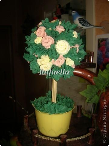 Мои первые деревья из роз....))    фото 1
