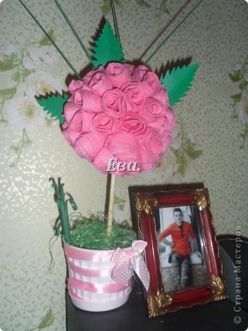 Желтые розы фото 4