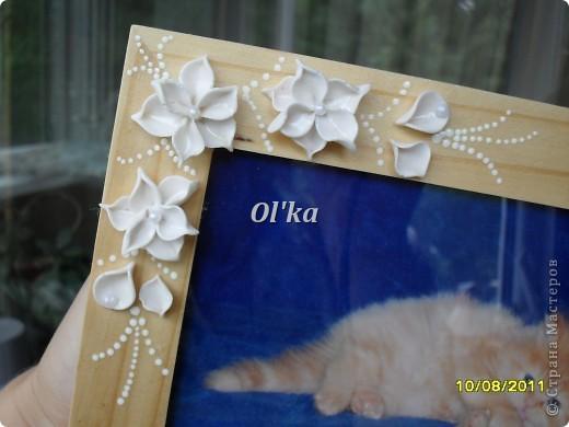 Попробовала слепить новые цветочки.   В рамке должно быть свадебное фото, но этот котейка такой милый!!! фото 3