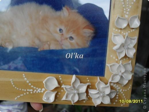 Попробовала слепить новые цветочки.   В рамке должно быть свадебное фото, но этот котейка такой милый!!! фото 2