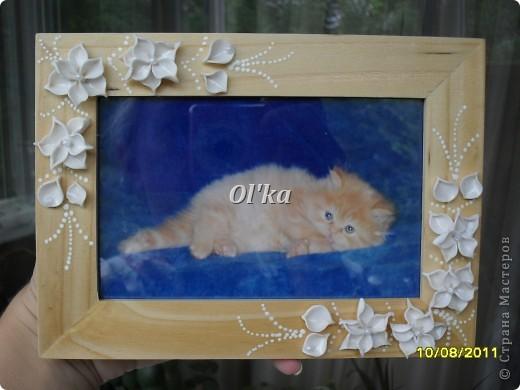Попробовала слепить новые цветочки.   В рамке должно быть свадебное фото, но этот котейка такой милый!!! фото 1