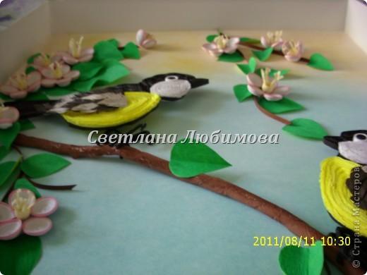 """Вот такие синички у меня появились. Брюшко и щечки делала как Анна Хомякова в свое работе """"Синичка"""". Цветы яблони сделаны из полос 1.5мм. фото 4"""