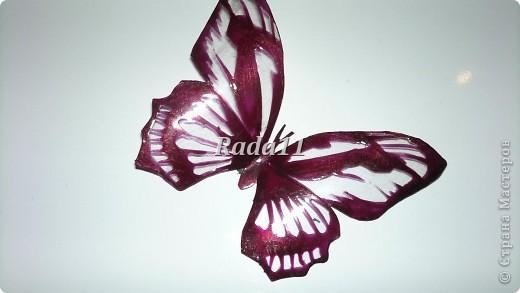 Бабочки вырезанны из пластиковых бутылок и раскрашены лаком для ногтей. фото 4
