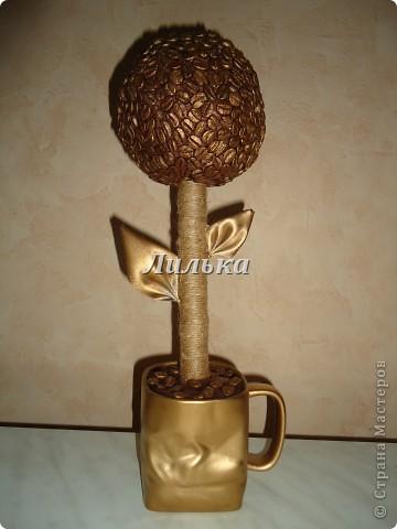 Кофейно-золотое деревце!