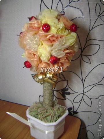 А это мои старые розы,с которых я начинала,вот они мне пригодились!!!Составила вот такой топиарий. фото 1