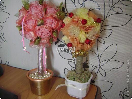 А это мои старые розы,с которых я начинала,вот они мне пригодились!!!Составила вот такой топиарий. фото 2