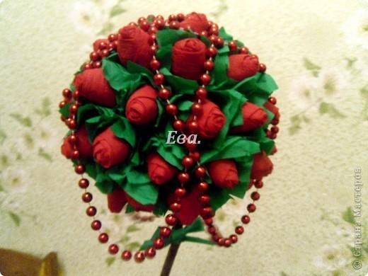 Желтые розы фото 10