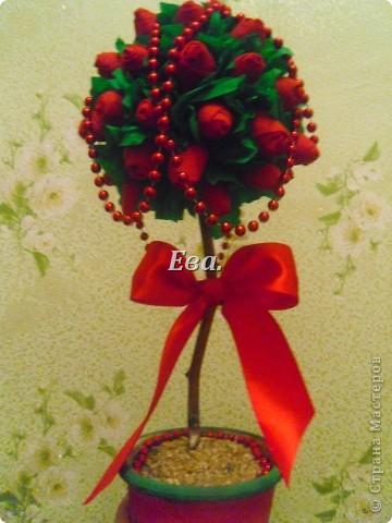 Желтые розы фото 11